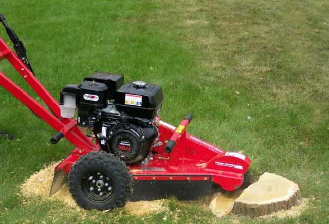 Where to find PRAXIS 13HP STUMP GRINDER in Newton
