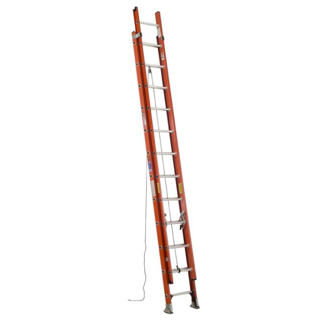 Where to find 24  EXTENSION LADDER in Newton