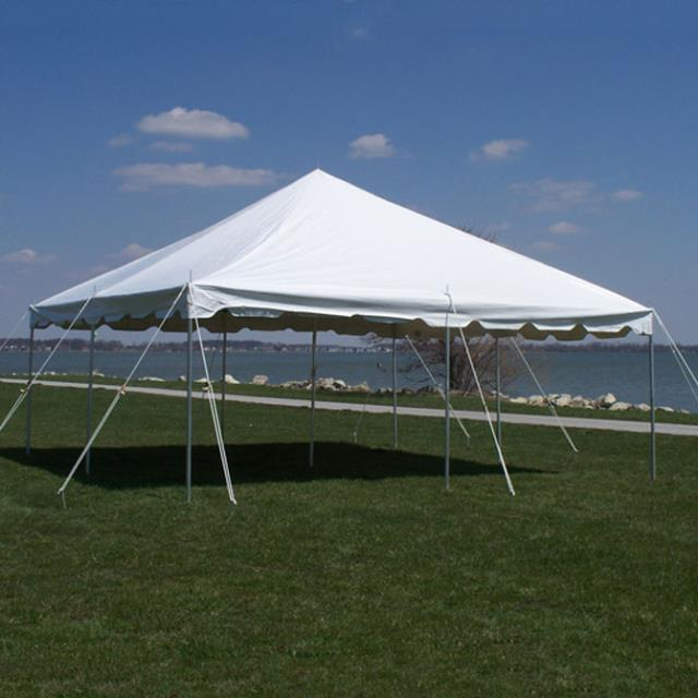Where to find 20X20 WHITE CANOPY in Newton