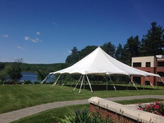 Where to find 40X40 POLE TENT in Newton