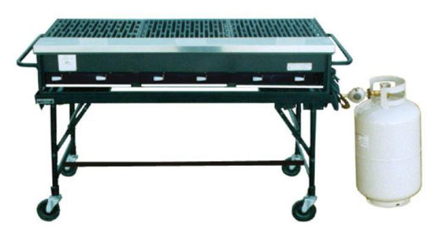 Where to find 2  X 6  PROPANE GRILL in Newton