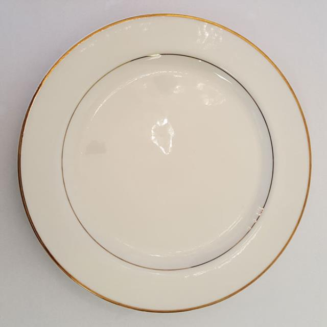 Where to find 10  DINNER PLATE, IVORY in Newton